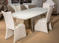 Trance Matrix Modern Dining Table AICO