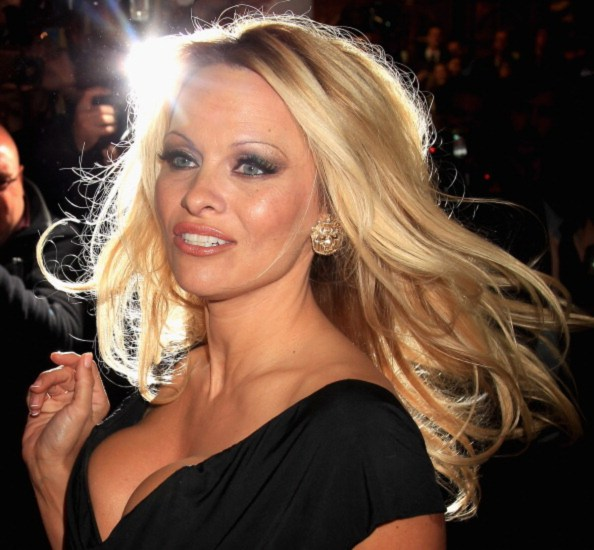 Pamela Anderson Net Worth 2019, Early Life, Body, and Career