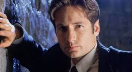 David Duchovny Net Worth 2019, Biography, Height, Weight ...