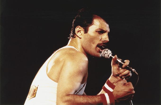 Freddie Mercury Net Worth 2020