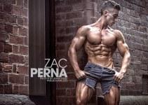 Zac Perna Net Worth 2020, Bio, Education, Career, and Achievement