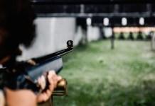 celebrities las vegas shooting gun cotrol