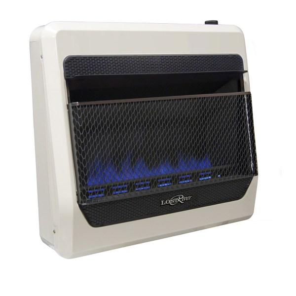 Blue Flame Gas Space Heater