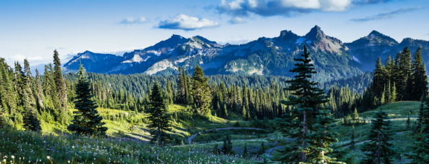 Washington Evergreen State Mit Grandioser Natur