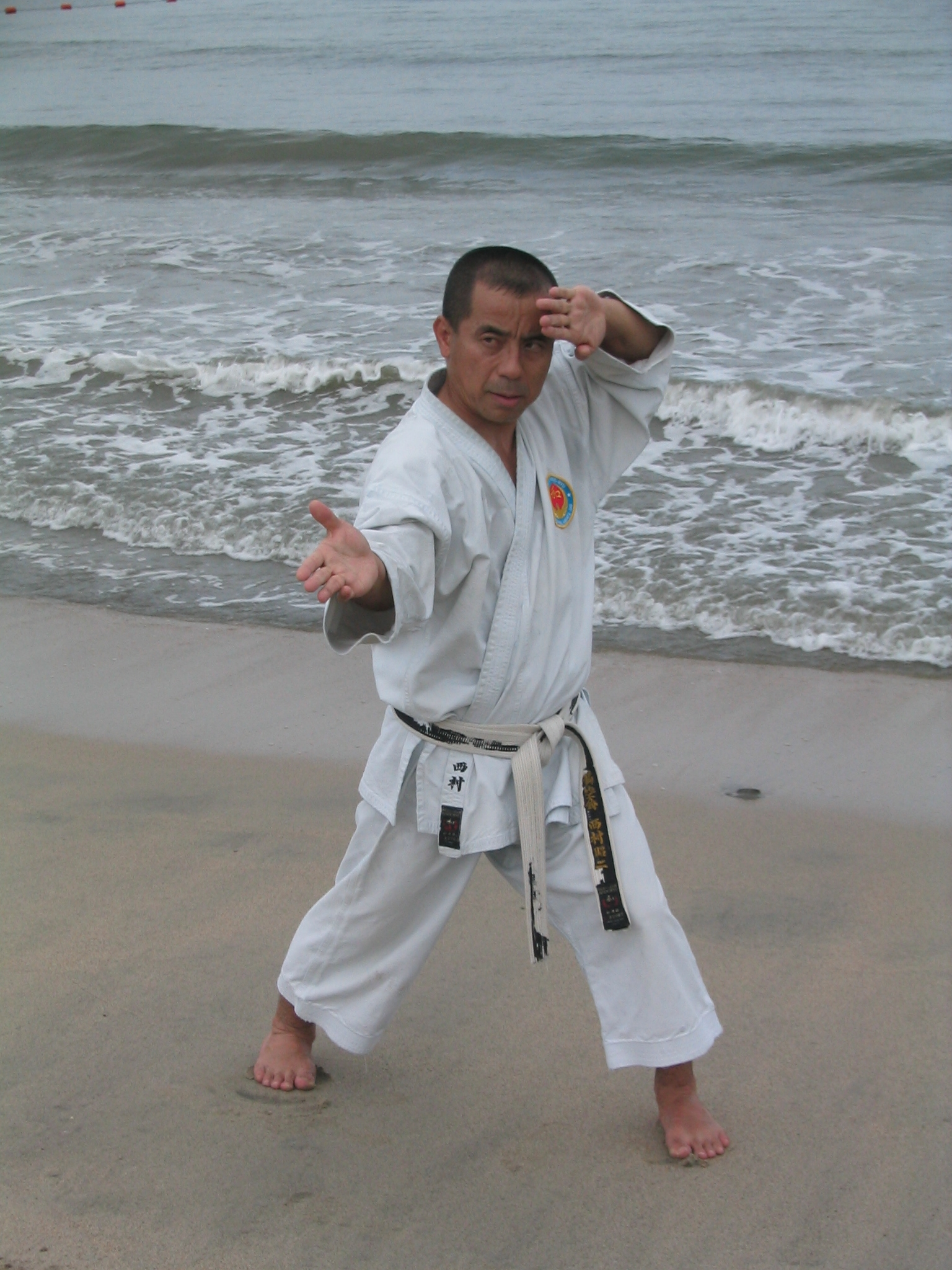 Beach Martial Arts Body