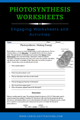 Photosynthesis Worksheet - USBIOLOGYTEACHING.COM