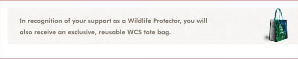 Swagbucks + WCS捐款 = 一份爱心 + 最高可获6500 SB + 一份感动 【更新:小伙伴们陆续拿到 SB了】