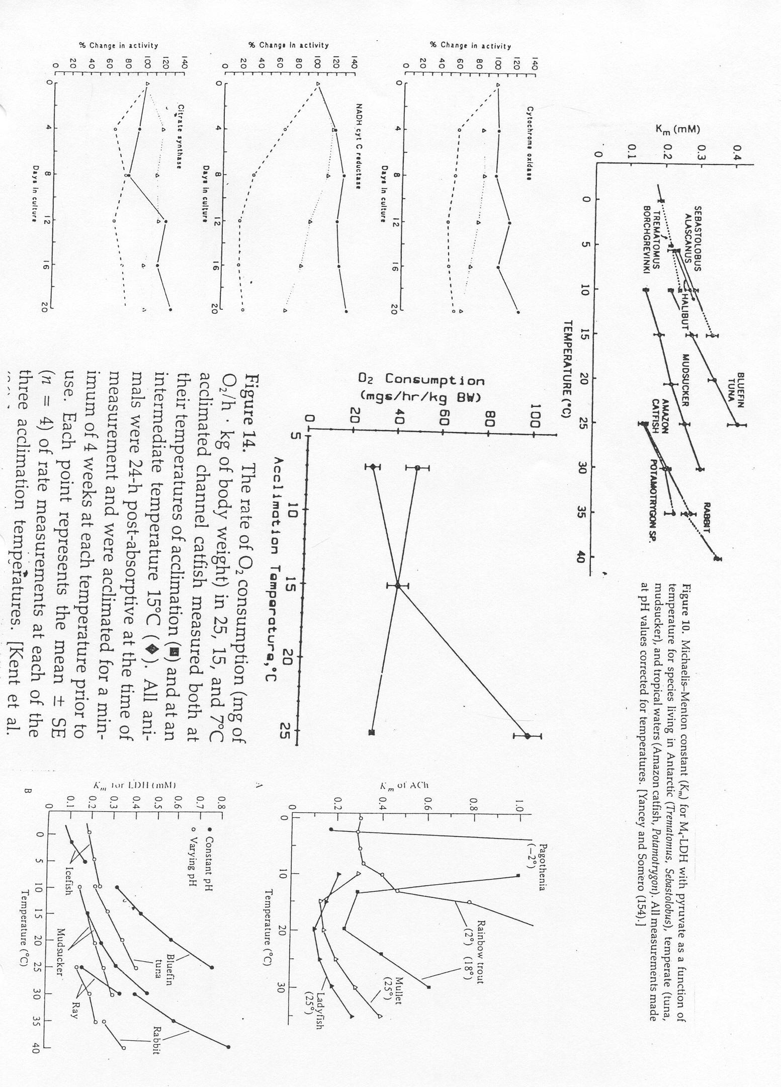 2006 Syllabus: Environmental Physiology