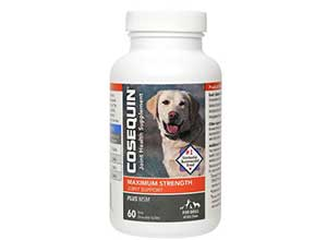 Cosequin Joint Supplement Plus MSM