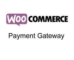 10 Best WooCommerce Payment Gateway Plugins 2017