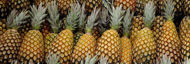 Why each time we eat a pineapple it is eating us back?