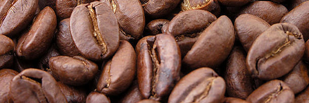 When was coffee discovered?