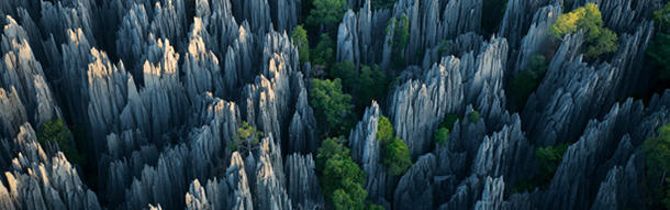 There is an unexplored park in Madagascar