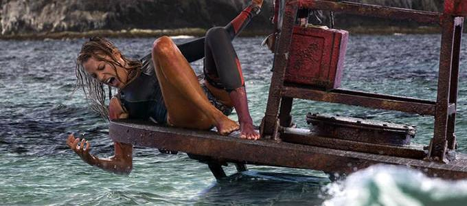 """The Shallows"": 12 fun facts about the movie! (List)"