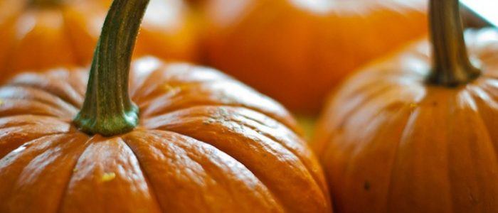 Pumpkin Trivia: 30 facts about the plant associated with Halloween!