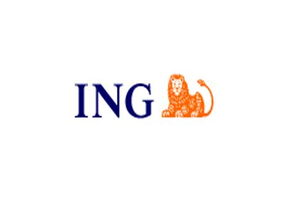 ingbankpl  UserLogosorg