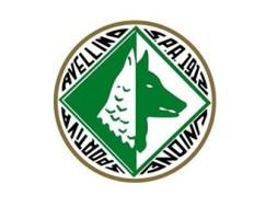 nuovo-logo-Us-Avellino-1912