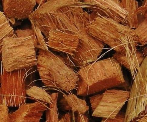 Applications and Uses of Coconut Husk in Modern World