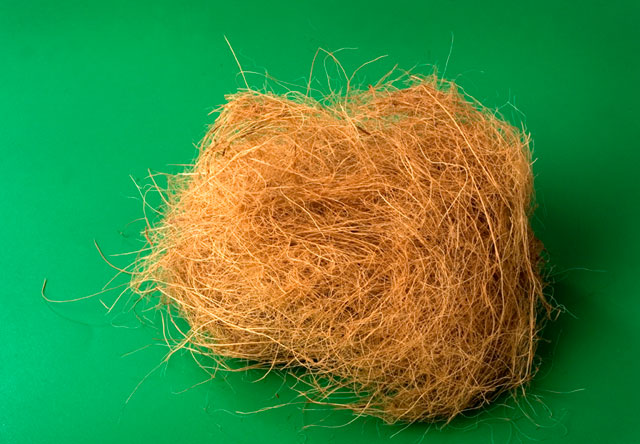 Top Benefits and uses of coconut coir