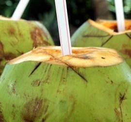 Coconut Water Benefits
