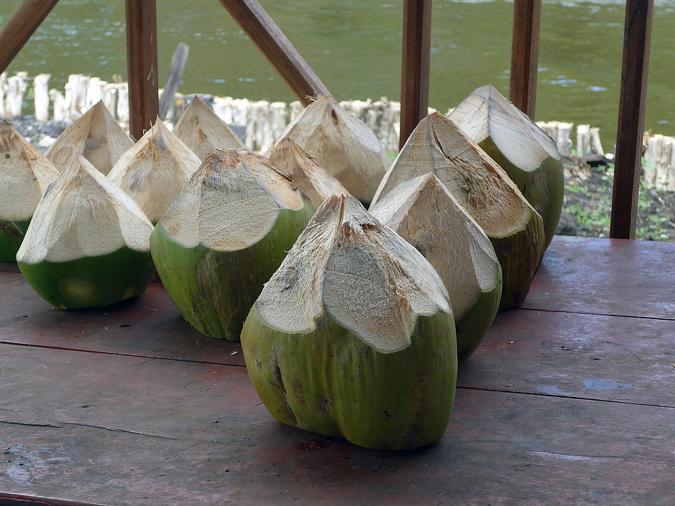 coconut-1233018_960_720
