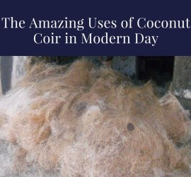 Uses of Coconut Coir