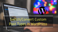 How To Change Post Type of An Article And Convert It To a Different Post Types in WordPress