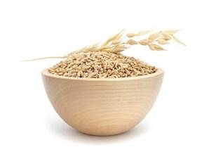 семена льна купить