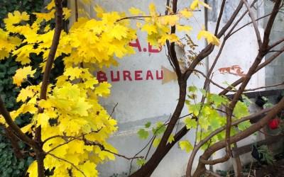 Ré-enchanter, vitaliser et prendre soin des espaces extérieurs de l'Usine