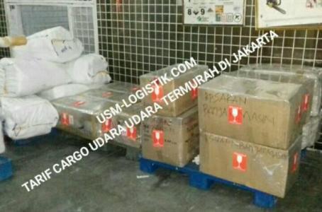 jasa cargo murah
