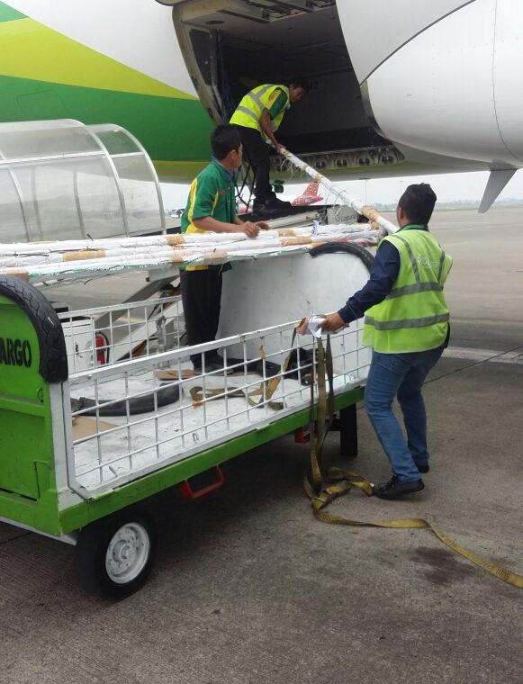 Layanan Cargo Udara Di Bandara Soekarno Hatta