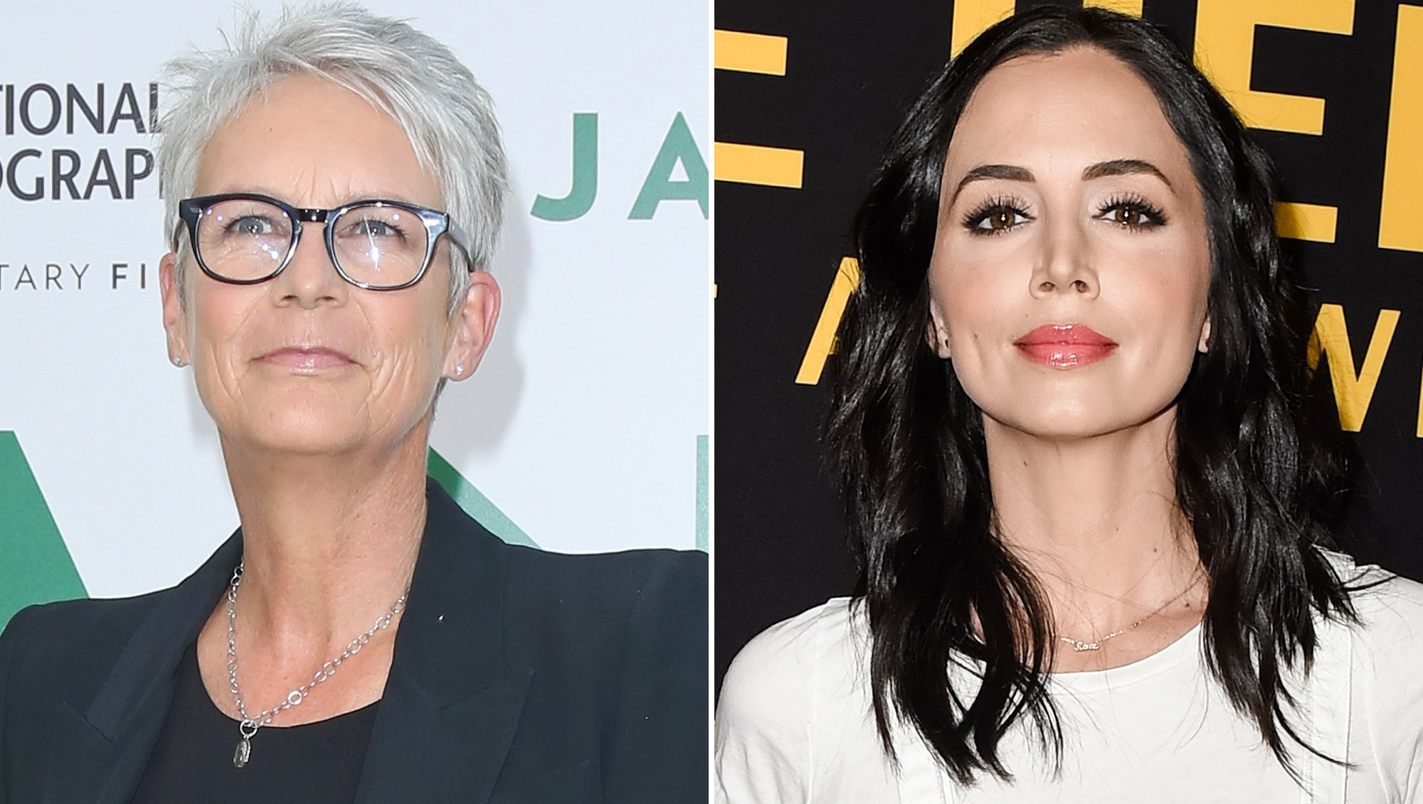 Jamie Lee Curtis, Eliza Dushku, True Lies, Sexual Allegation