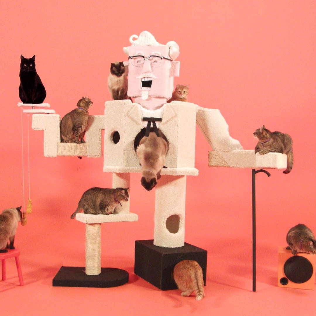 KFC cat climber