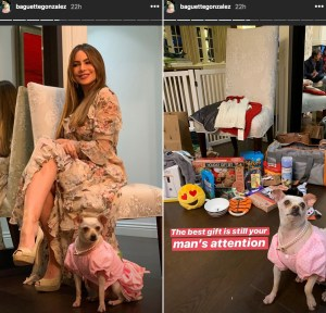 Manolo-Vergara-and-Sofia-Vergara-dog-party