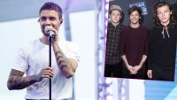 Liam Payne Hints at One Direction Christmas Reunion