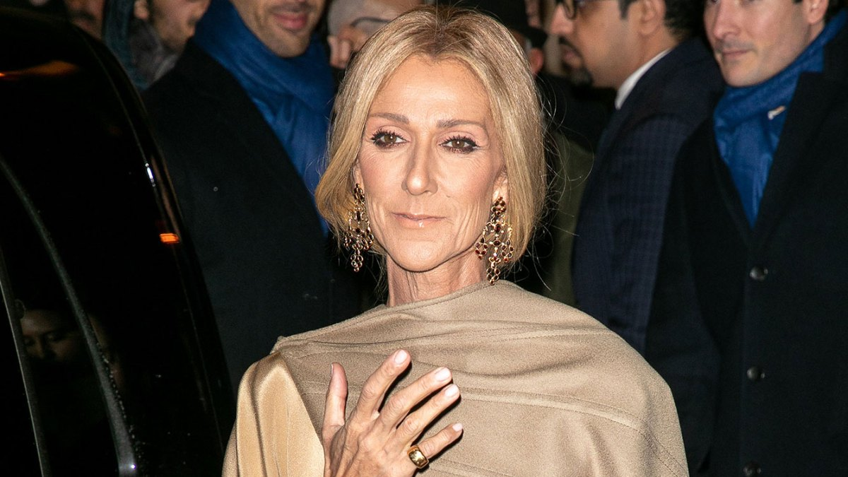celine dion slams critics of her weight loss: 'leave me alone'