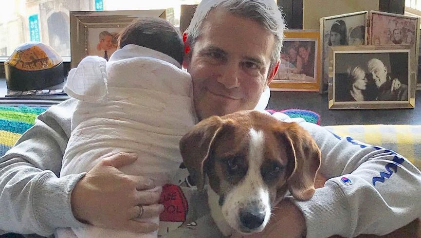 Andy Cohen Celebrates Valentine's Day With Baby Benjamin and Dog