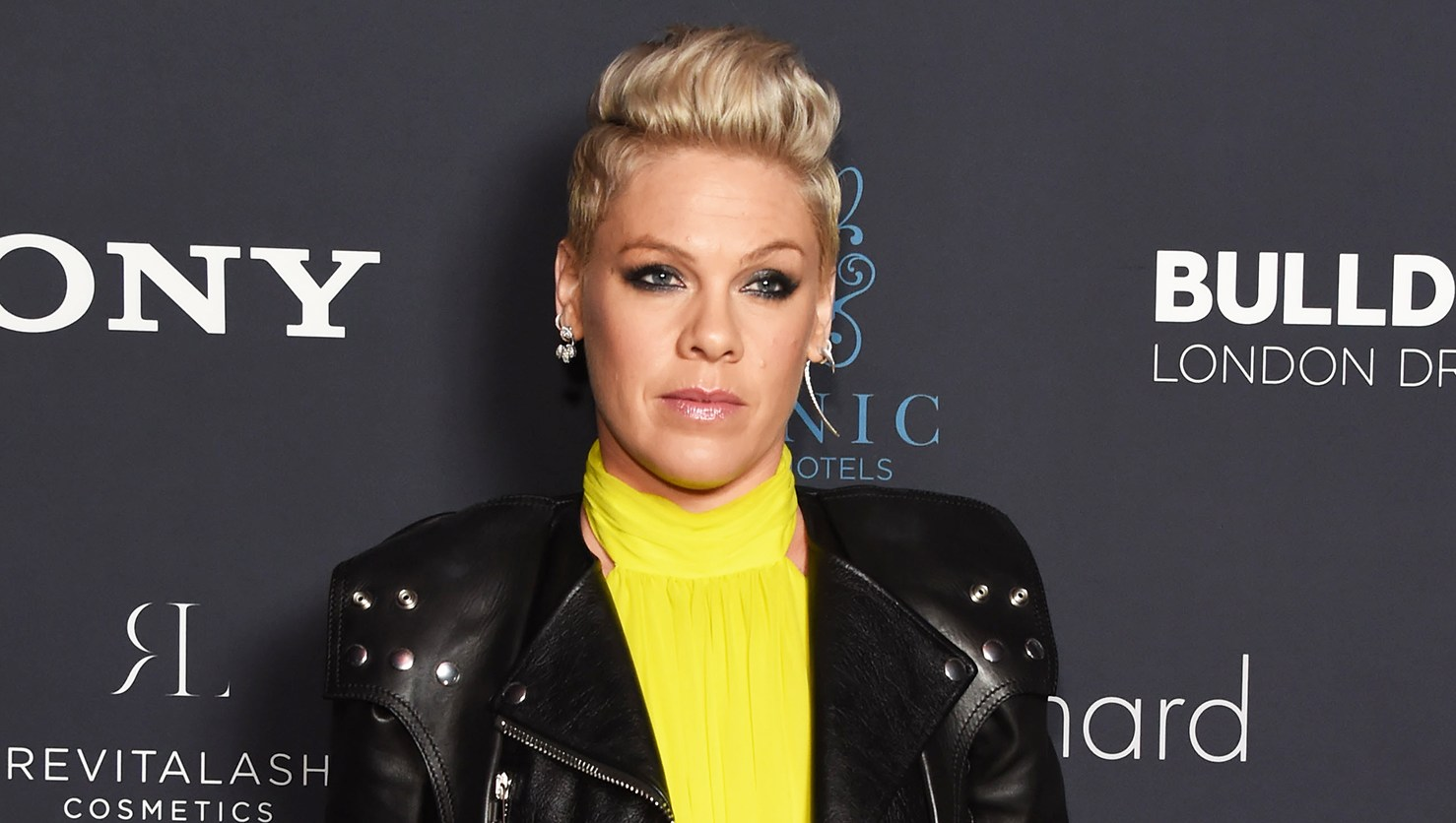 Pink Slams Trolls for Criticizing a Picture of Her Son, 2, Without a Diaper: 'You're All F--king Disgusting'