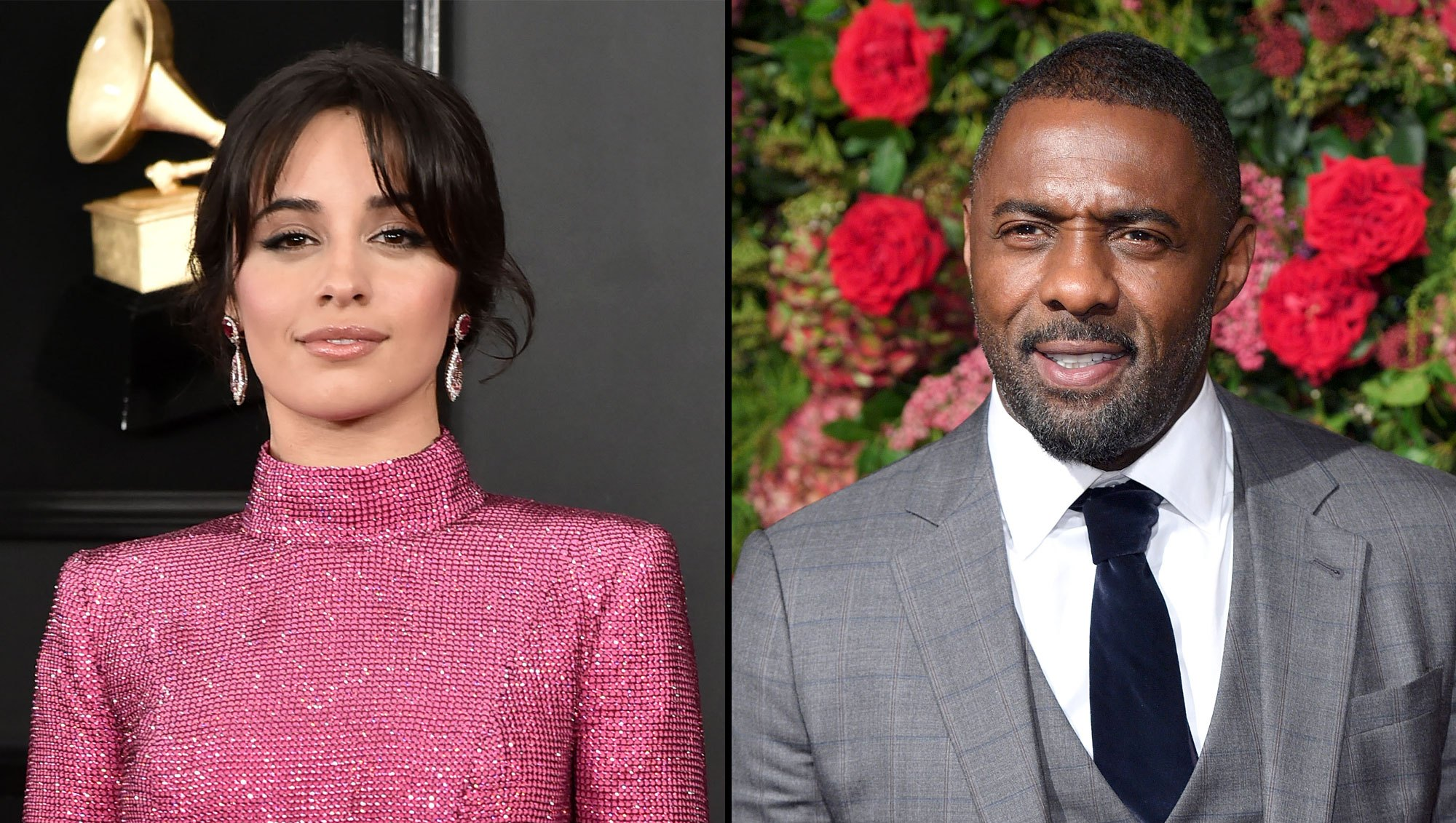 Camila Cabello and Idris Elba React to Notre Dame Fire
