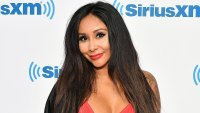 Snooki Shows Off Post-Baby Body in Bikini