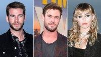 Liam Hemsworth Looks Gloomy at Beach With Chris Hemsworth After Miley Cyrus Split