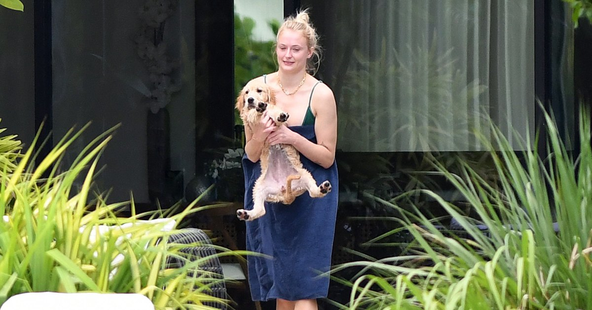 Sophie Turner Cradles Adorable New Puppy Weeks After the Death of Her and Joe Jonas' Dog Waldo