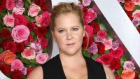 Amy Schumer Claps Back at Troll About Son