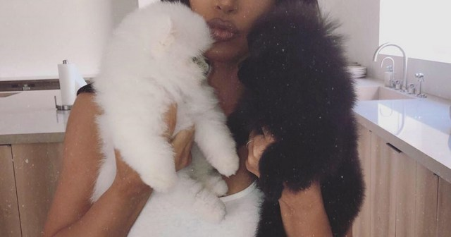 Celebrities With Their Pets: Kim Kardashian, Reese Witherspoon and More!.jpg