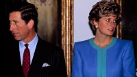 Princess Diana Prince Charles Case Solved Book