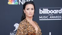 Demi Lovato Israel Backlash Animal Print Dress Red Carpet