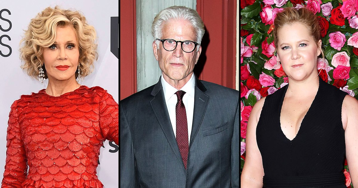 Stars Arrested While Protesting: Jane Fonda, Ted Danson, Amy Schumer and More