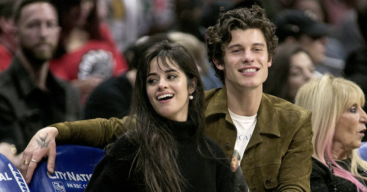 Shawn Mendes and Camila Cabello Show Off Courtside PDA: Photos