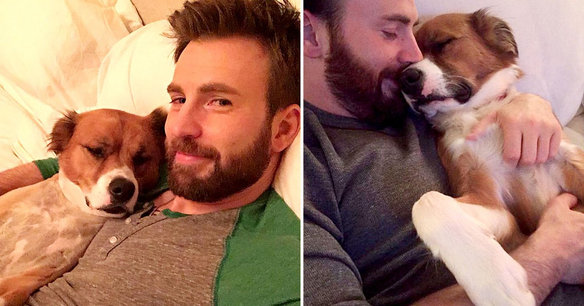 Chris Evans and His Dog Dodger: A Timeline of Their Pawsome Friendship