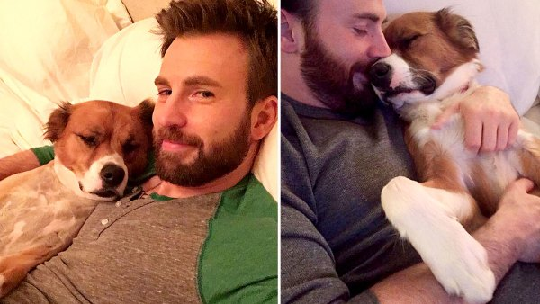 Chris Evans His Dog Dodger See Their Pawsome Friendship